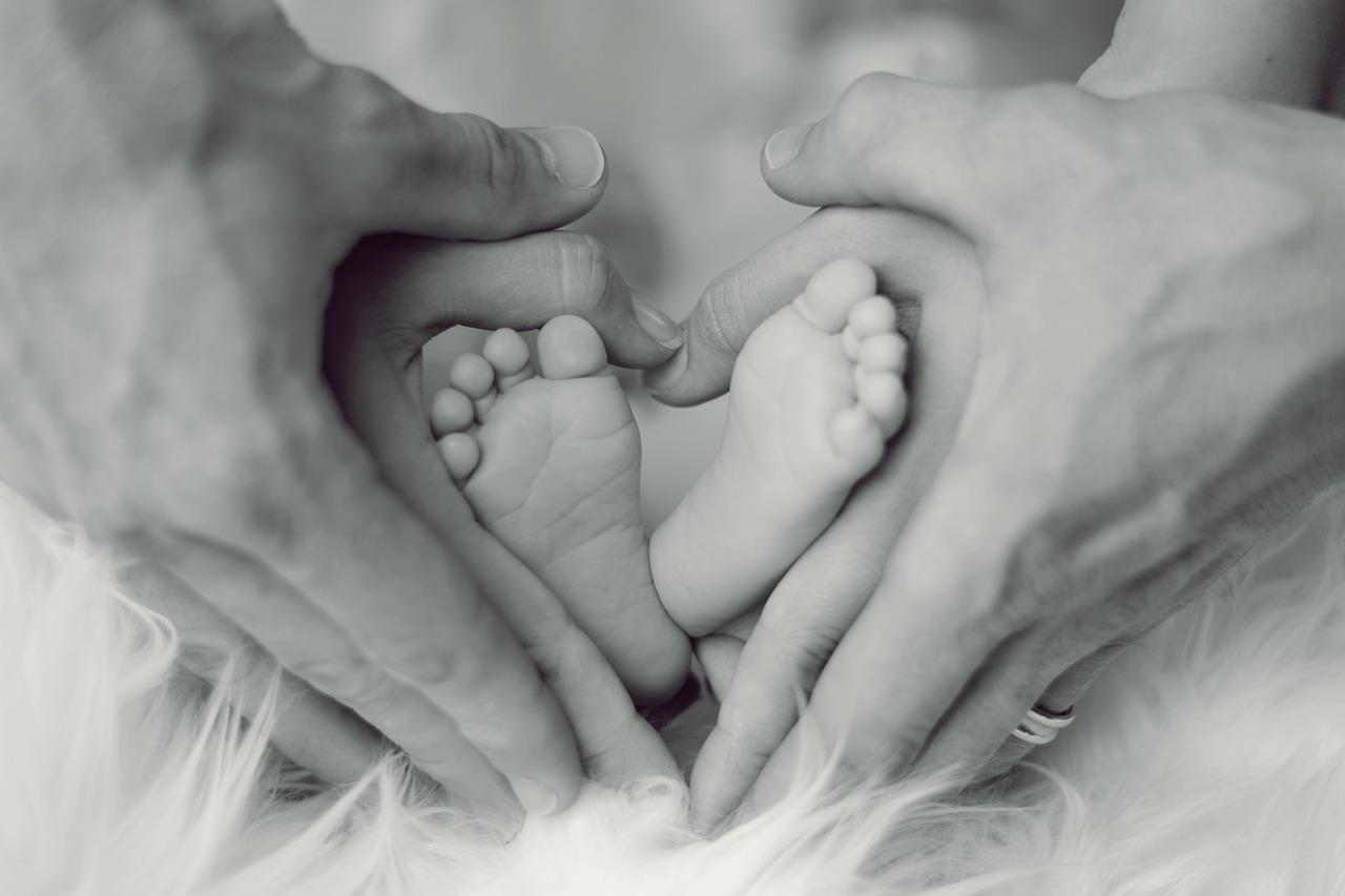 【子育て】20週目に突入。妻曰く「胎動がすごい」らしい。